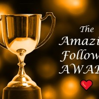 The Amazing Follower Award